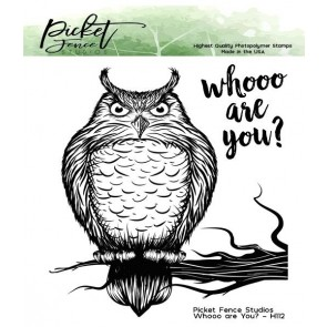 Whooo are You? - Picket Fence Studios